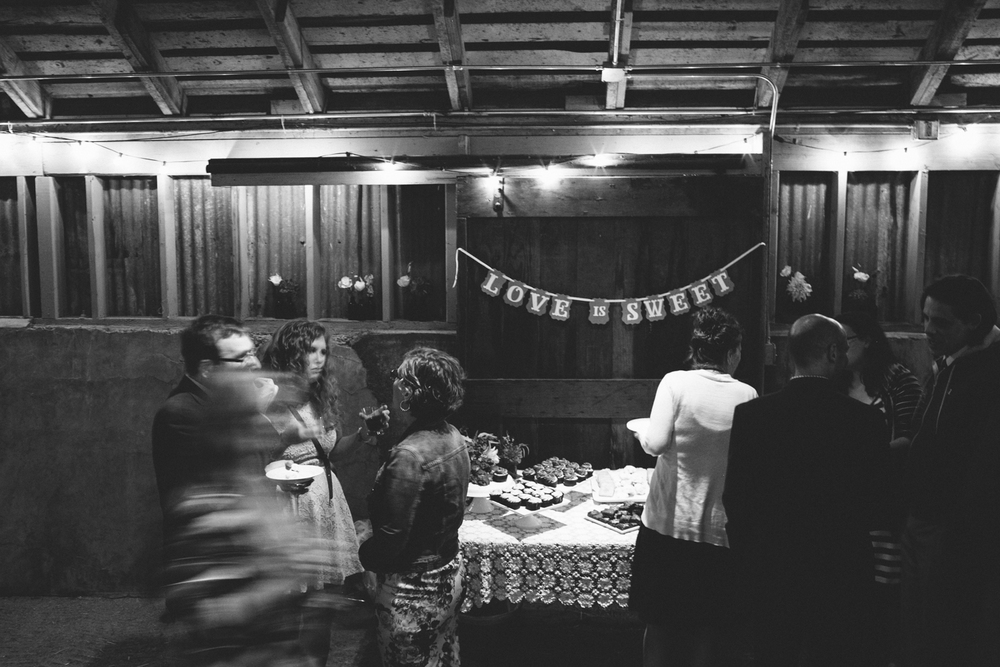 Bolinas West Marin Wedding Rachelle Derouin Photographer-89.jpg