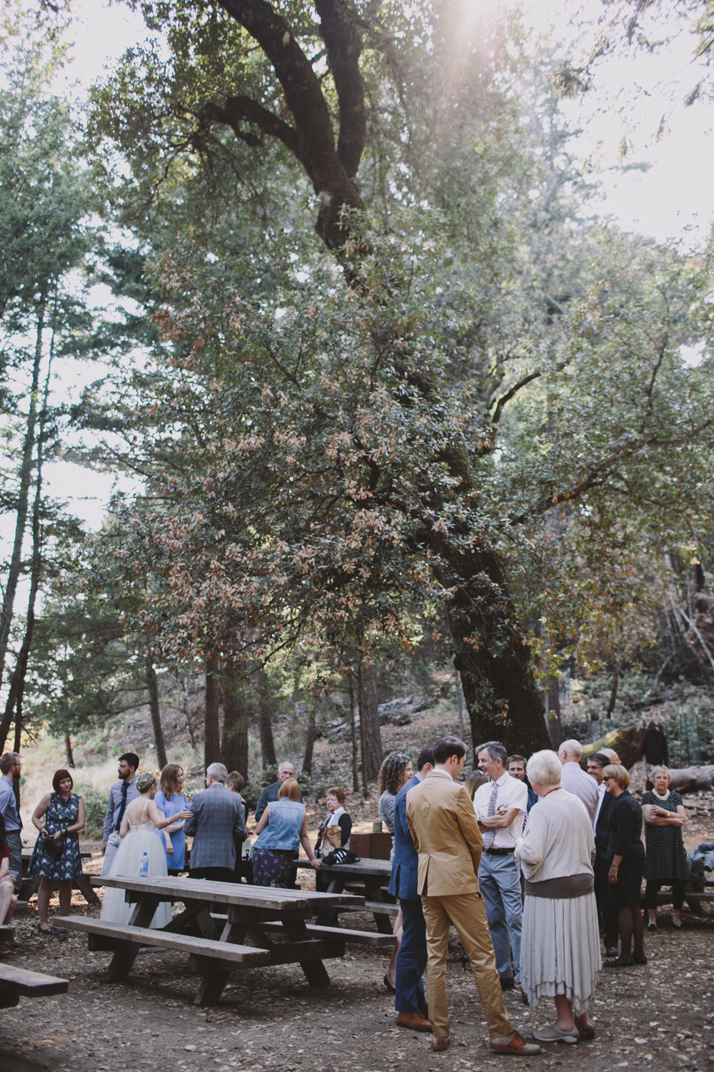 Mt Tamalpais Mountain Home Inn Wedding Rachelle Derouin Photographer-60.jpg
