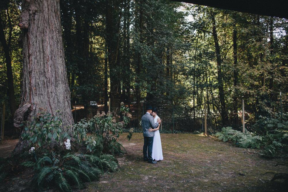Sebastopol Backyard Wedding Rachelle Derouin Photographer-21.jpg