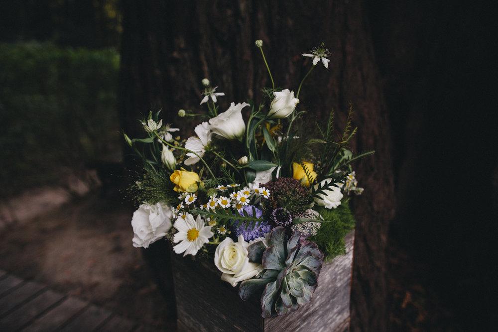 Sebastopol Backyard Wedding Rachelle Derouin Photographer-27.jpg