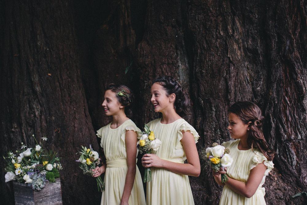 Sebastopol Backyard Wedding Rachelle Derouin Photographer-38.jpg