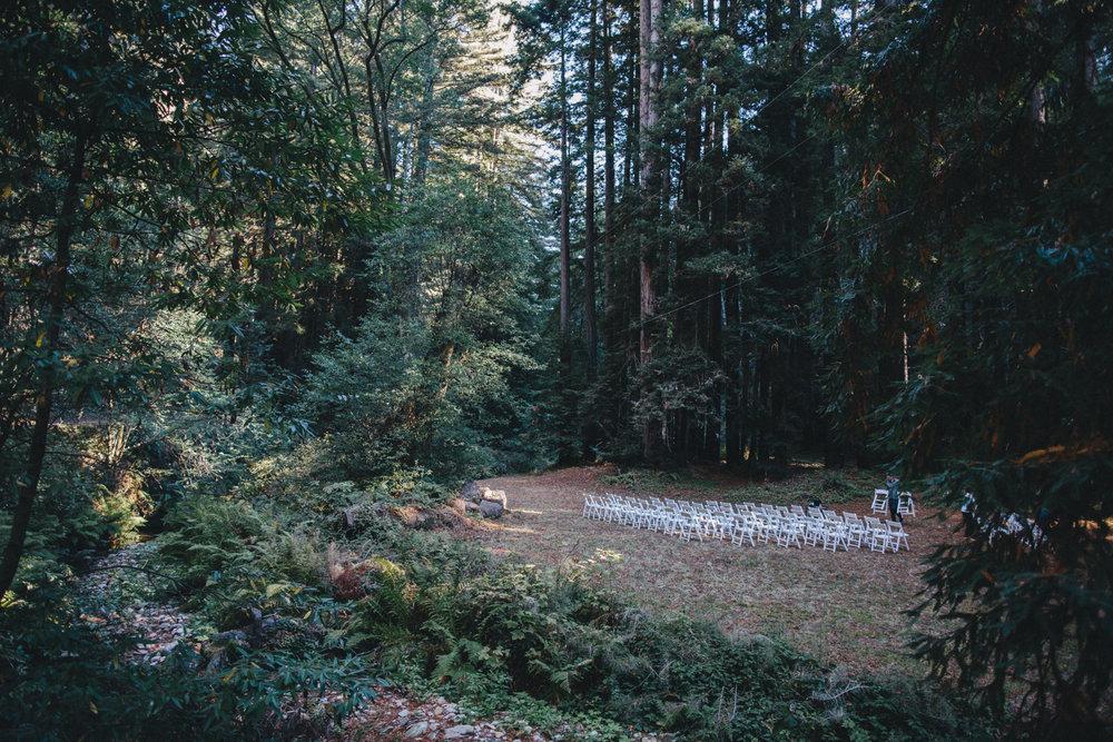 Pescadero Forest Wedding Rachelle Derouin Photographer-16.jpg