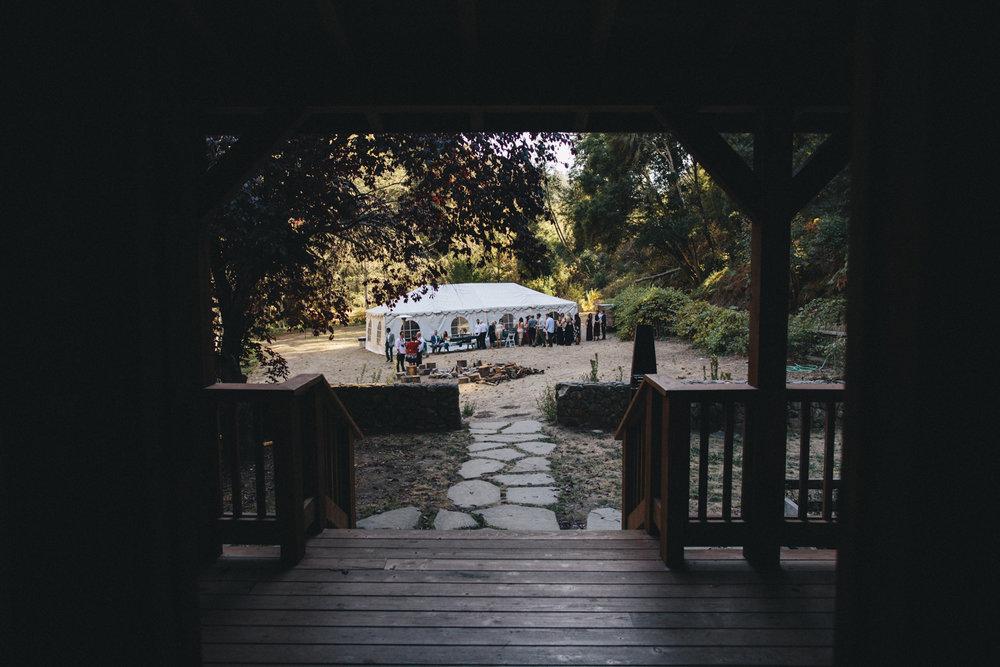 Pescadero Forest Wedding Rachelle Derouin Photographer-47.jpg