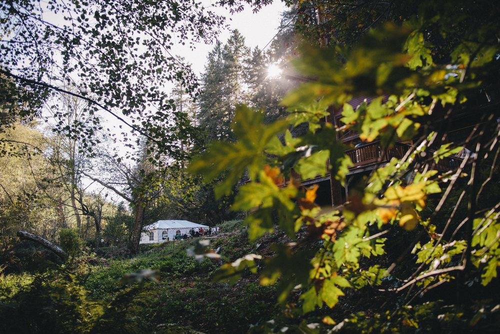 Pescadero Forest Wedding Rachelle Derouin Photographer-60.jpg
