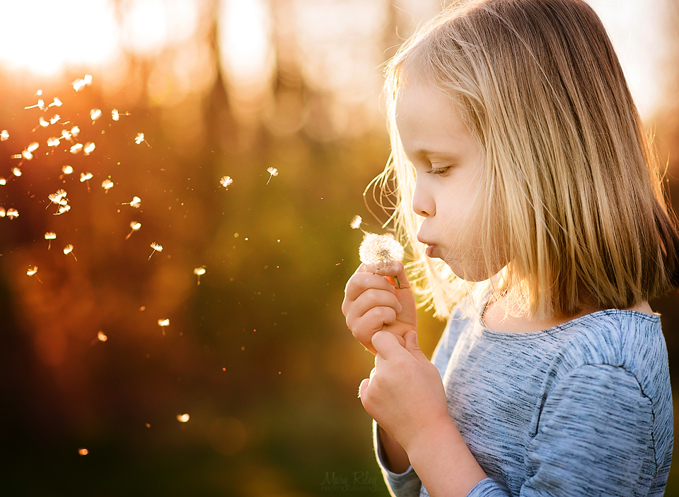 Kids Dandelion Mary Riley Photography Wentzville Missouri.jpg