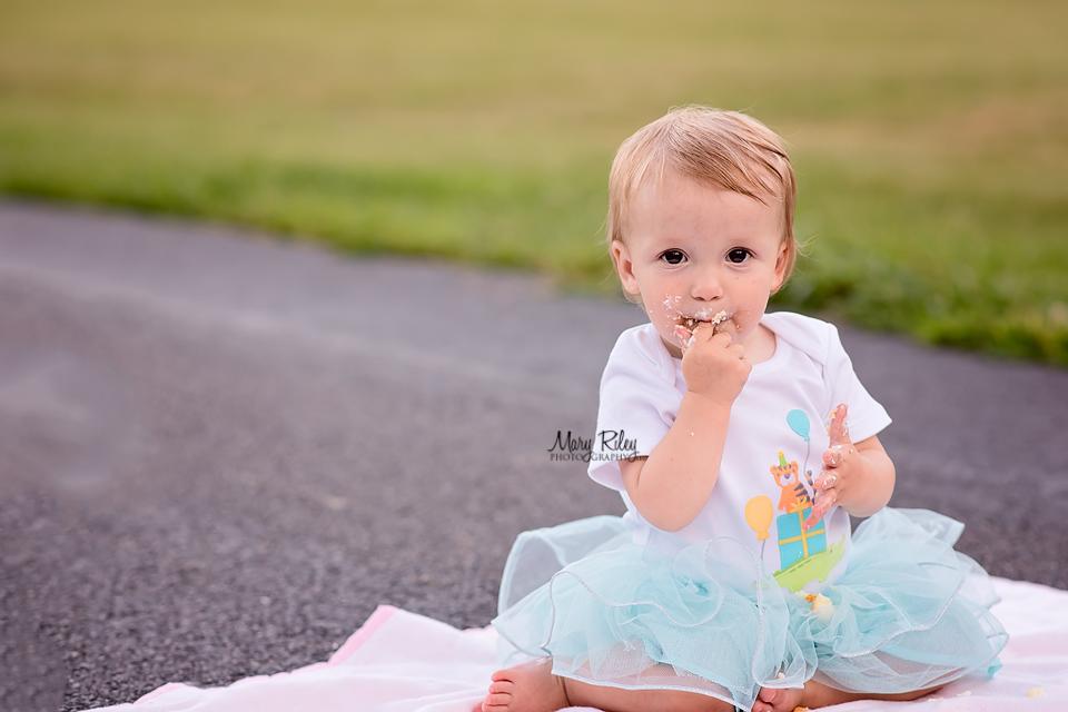 Children Photographer Cake Smash Quail Ridge Wentzville Missouri