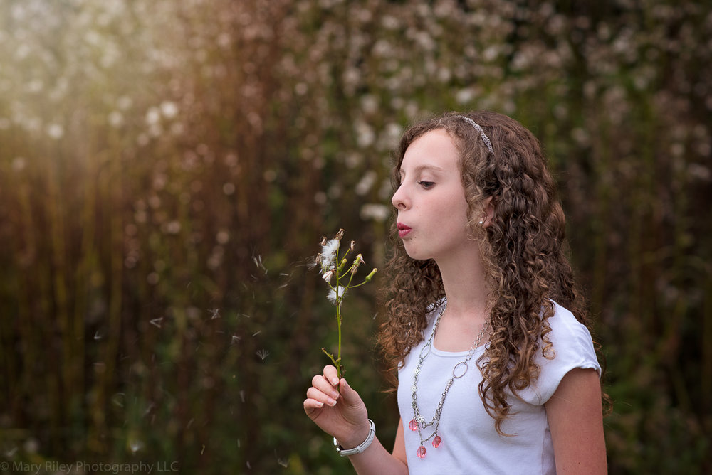 girl blowing cotton Mary Riley Photography Wentzville Missouri