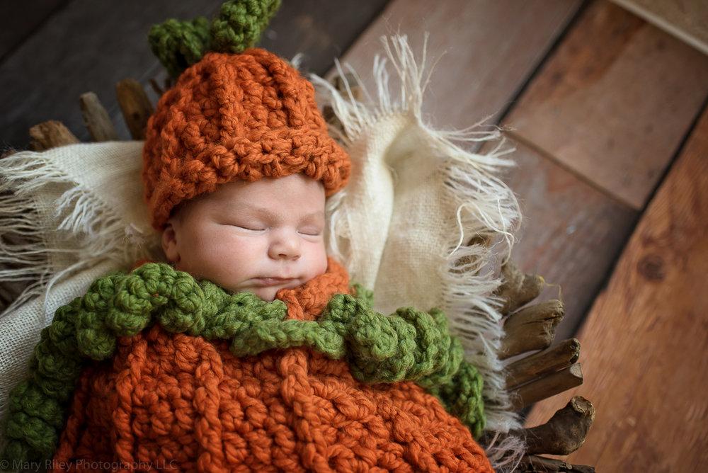 Baby Pumpkin Newborn Photography Wentzville St. Louis Missouri