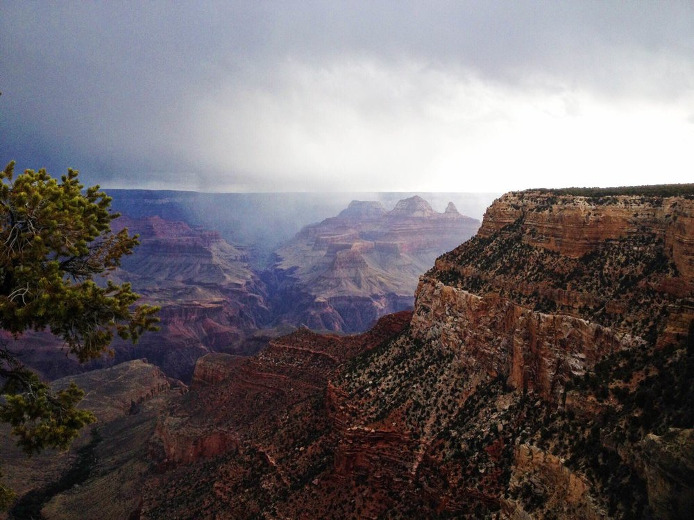 Grand Canyon. Taken by Desiree Annis