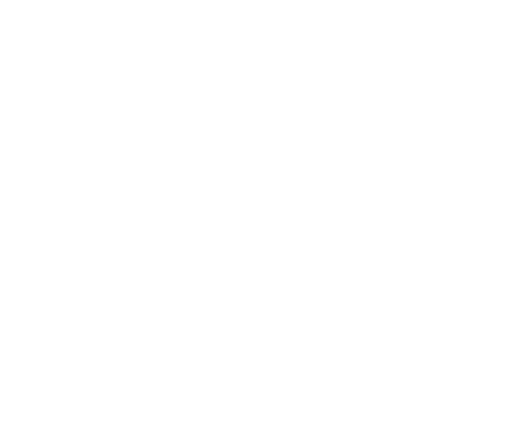 30. logo white