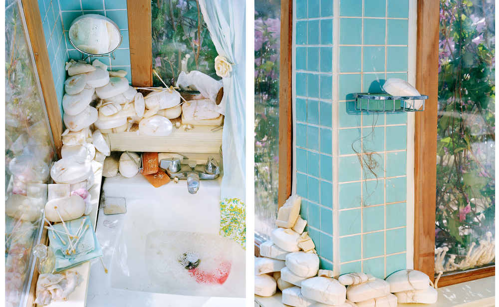 Vivarium_Bathroom_Diptych.jpg
