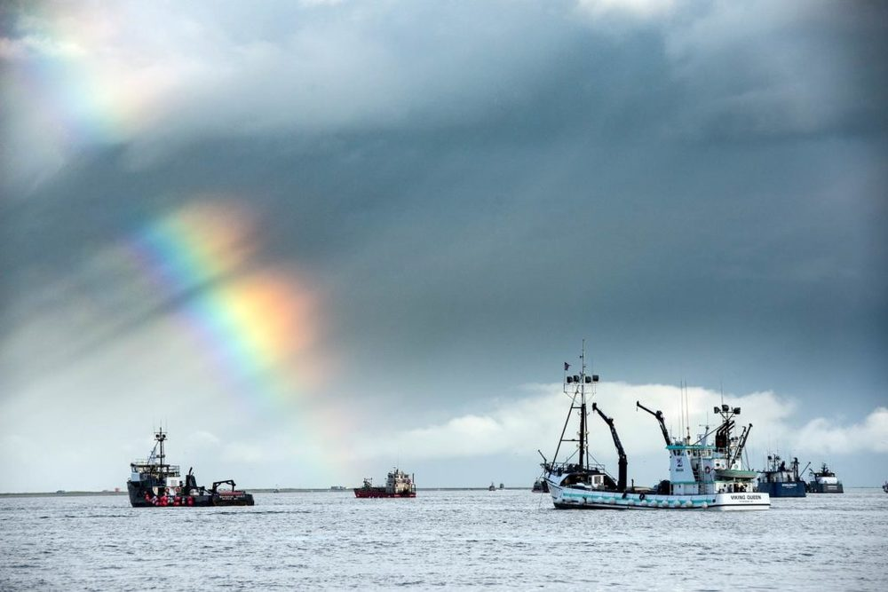 A rainbow adorns the horizon as tenders wait to take fish after an opener.