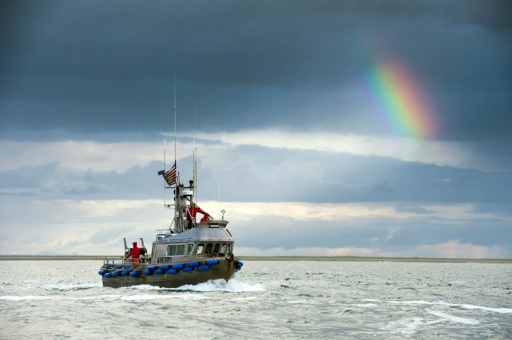 We could not imagine a more beautiful or appropriate photo for the 4th than this stunning photo of a gillnetter underway with a flag at the masthead. Remember to grill Bristol Bay sockeye this weekend, and have a safe, happy Independence Day!