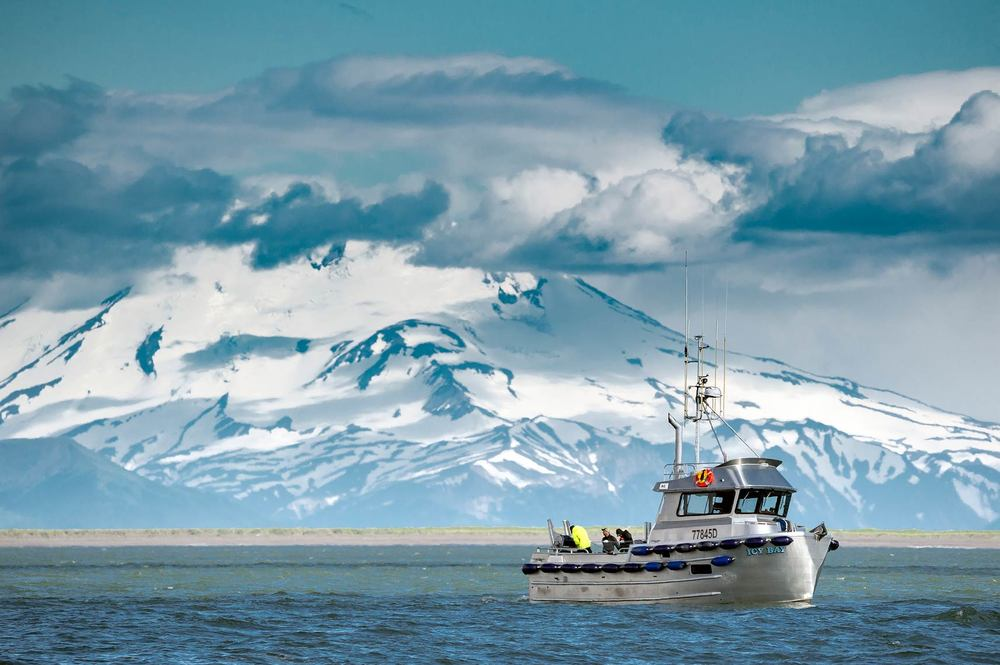 The F/V Icy Bay picks a set with the Mt. Peulik Volcano on the horizon.