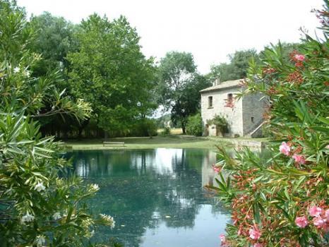 villa plantat 1.jpg
