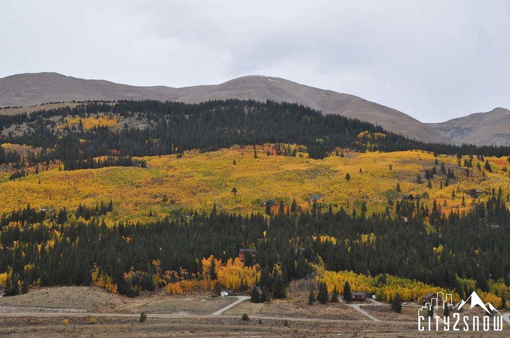 Breck14.jpg