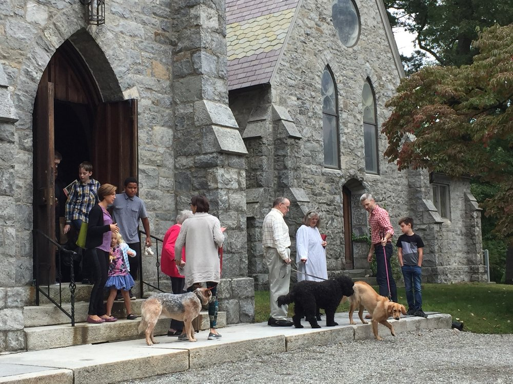 Blessing of the Animals Day, Oct. 9, 2016