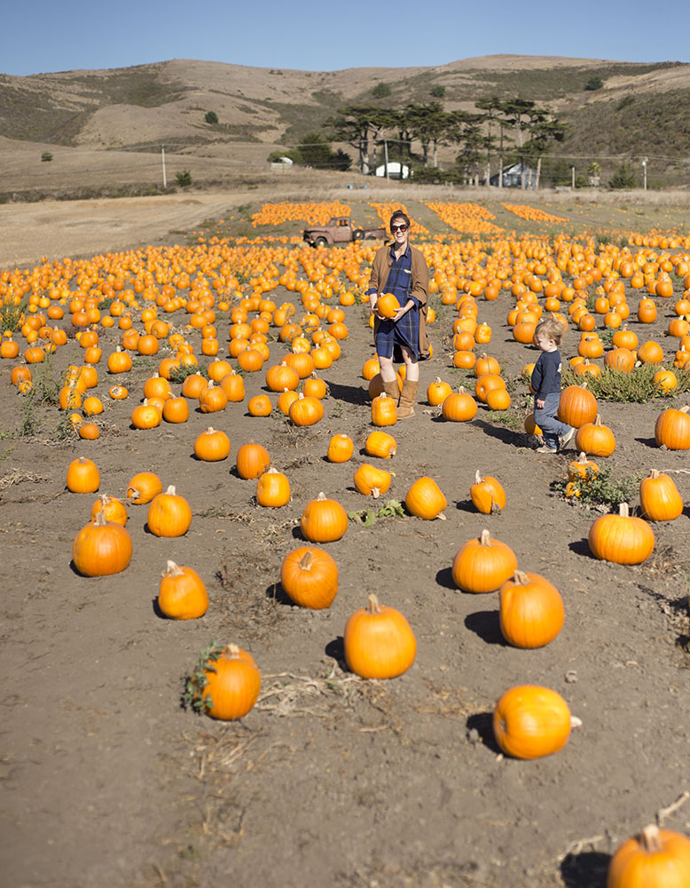at Bob's Pumpkin Patch in Half Moon Bay with Ezra.