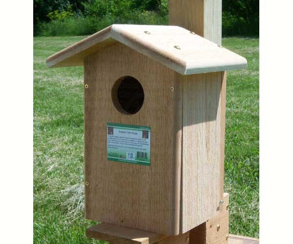 Screech Owl nesting box availible at the shop.