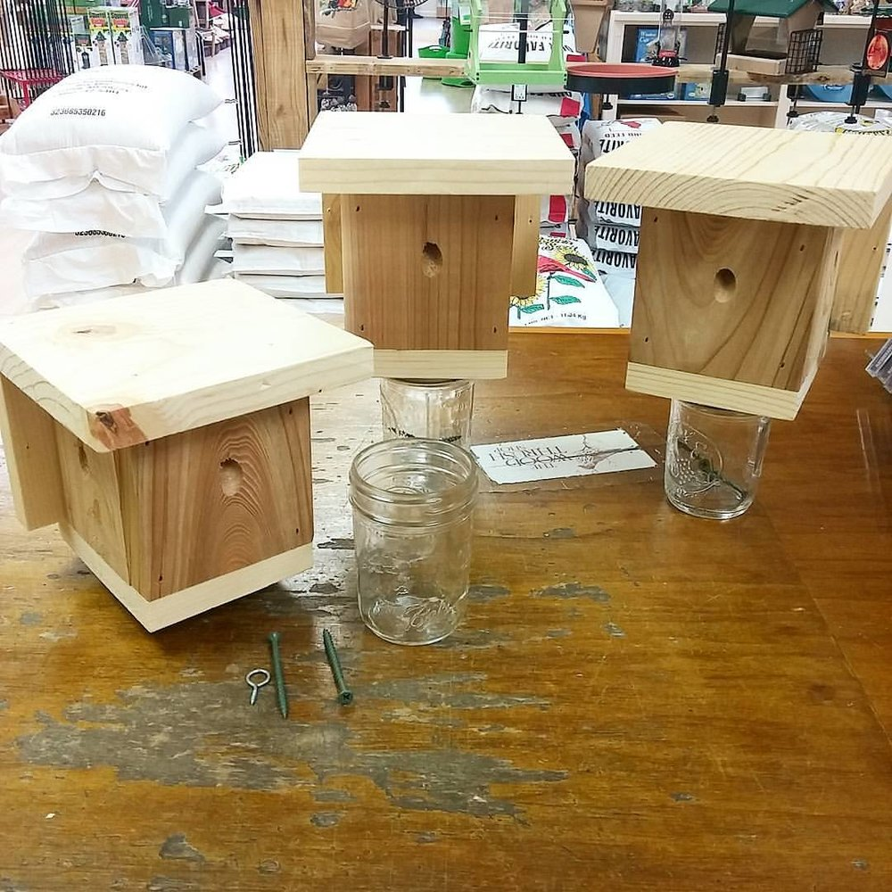 Product Profile Carpenter Bee Traps