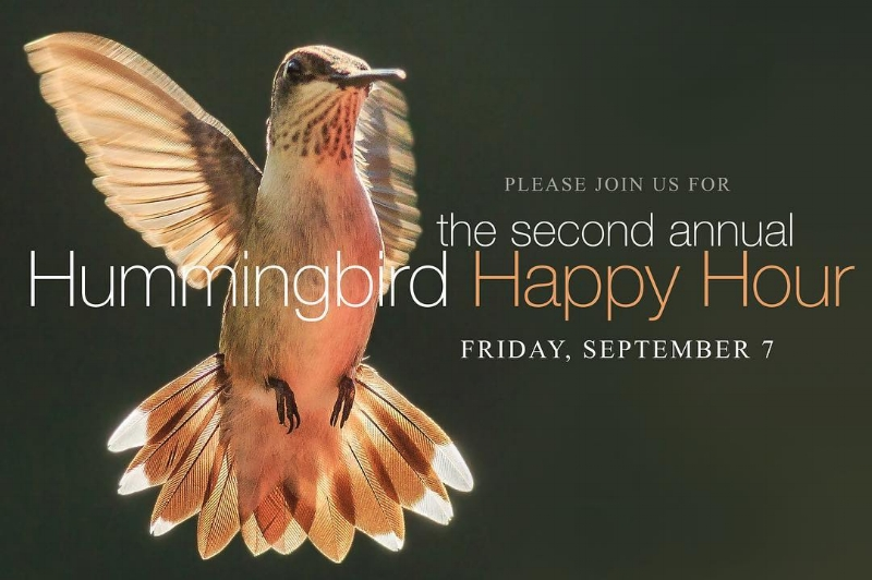 hummingbird happy hour 2018.jpg