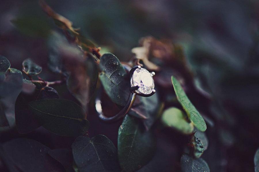 Wedding Ring, Hawaii, Photography