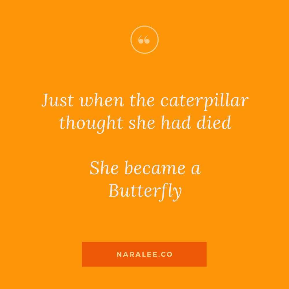 [Inspiration-Quotes] Caterpillars-turning-into-butterflies-Nara-Lee.jpg