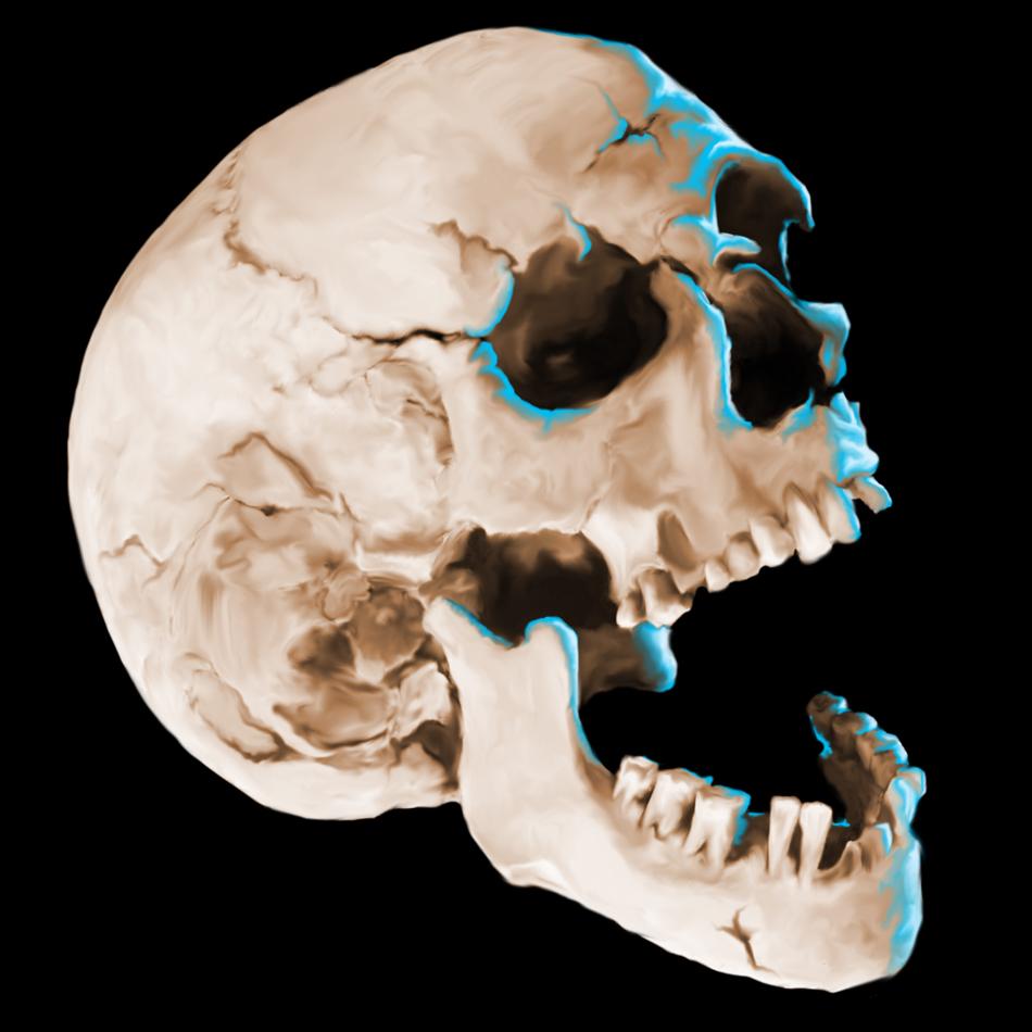 skull-3-instagram.jpg