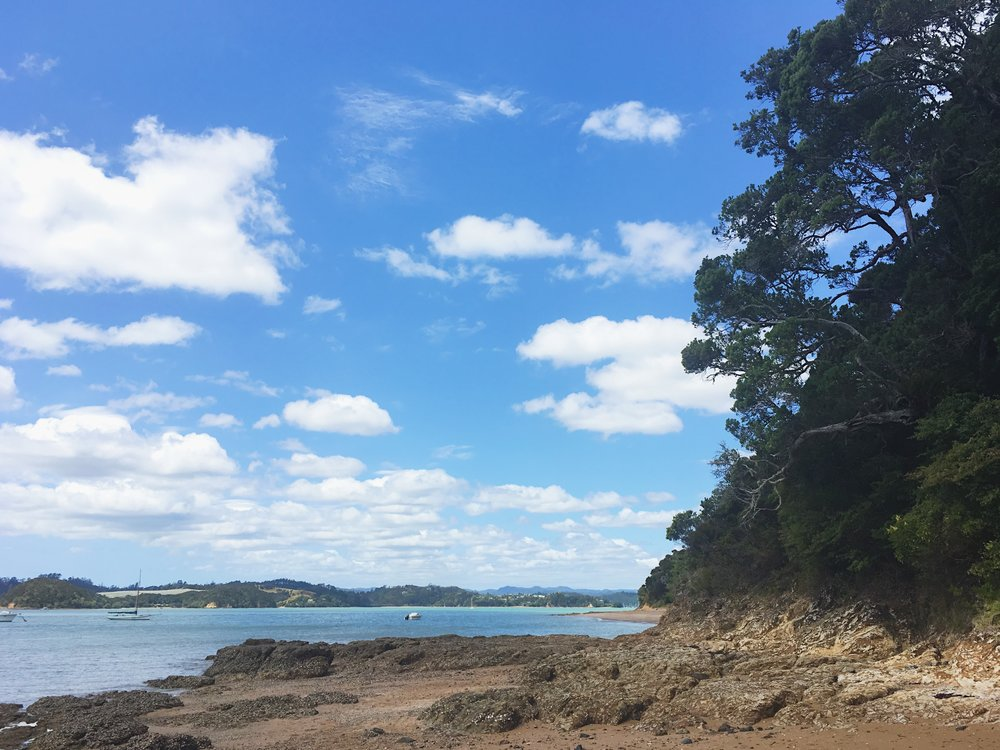 On the way from Paihia to Opua.