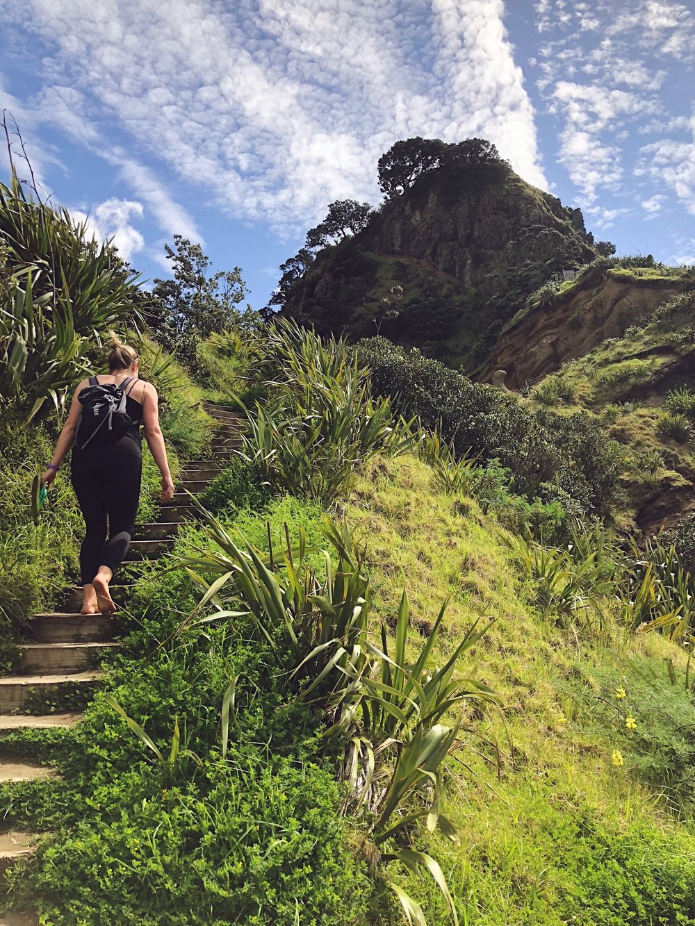 Te Piha - Lion Rock