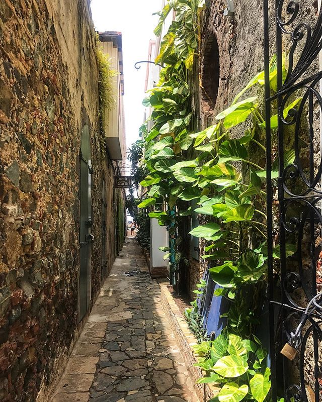 Escape and breath the air of a new place!! . . . #StThomas #USVI #VirginIslands #CharlotteAmaile #ShoppingDowntown #CobblestoneStreets #Views #Summer2018 #WeekendStuff #TheCaribbean #Experience #Travel #SaintThomas #Downtown #InstaTravel #IslandLife #Views #Traveler