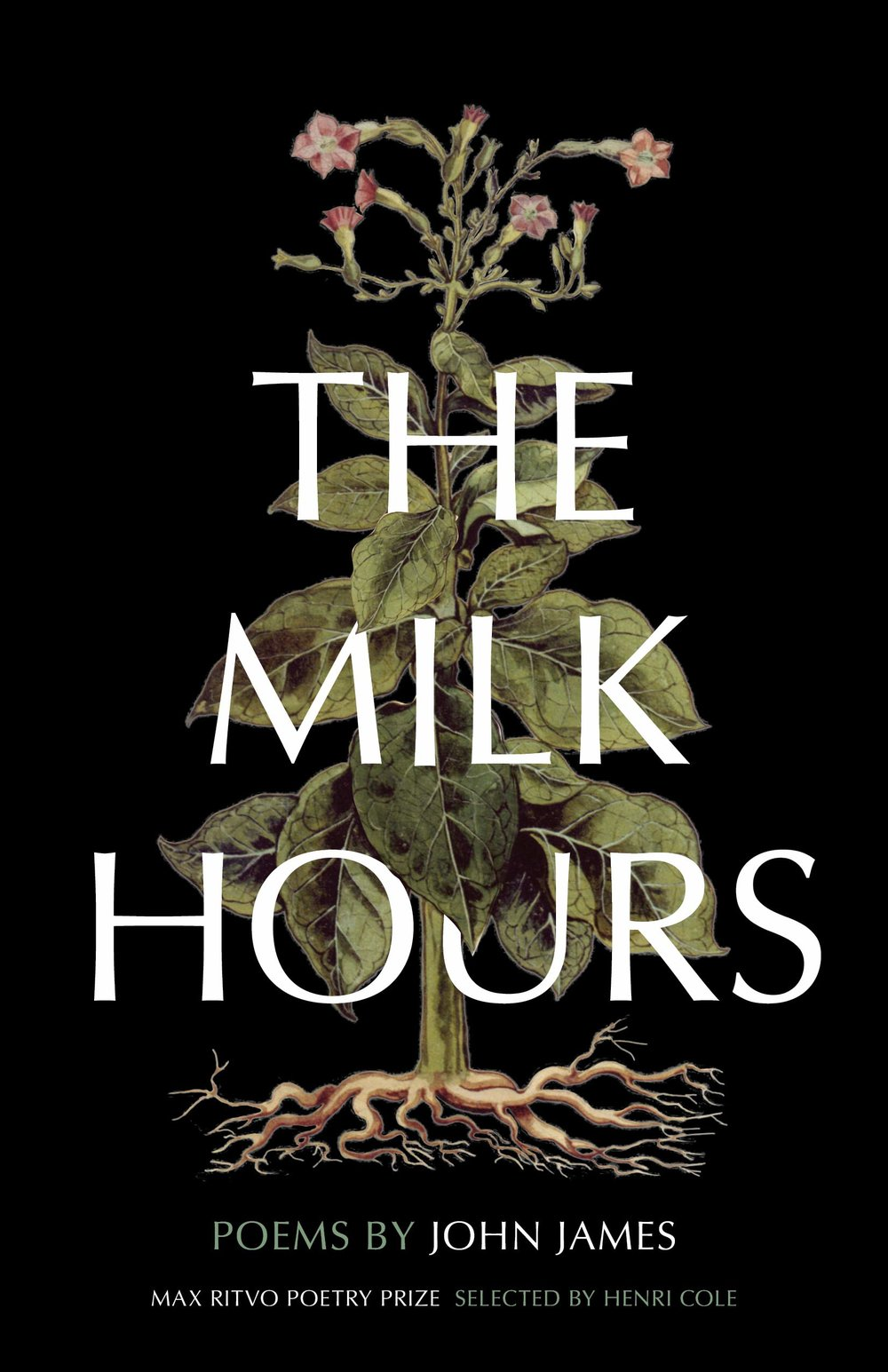 THE MILK HOURS BY JOHN JAMES