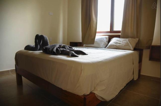 bed copy.jpg
