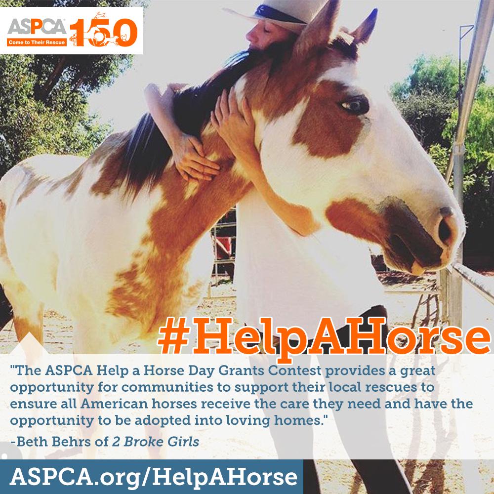 aspca-help-a-horse-day-2.jpg