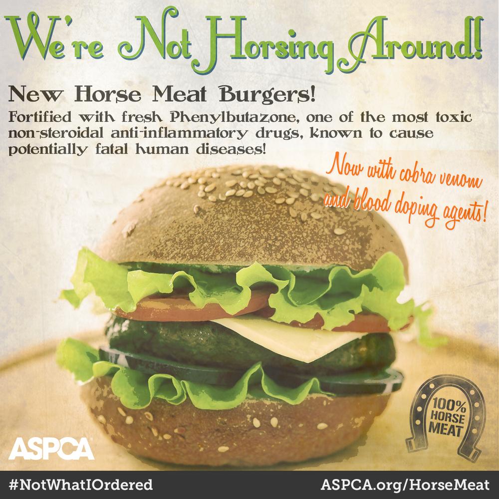 ASPCA horse meat burger image