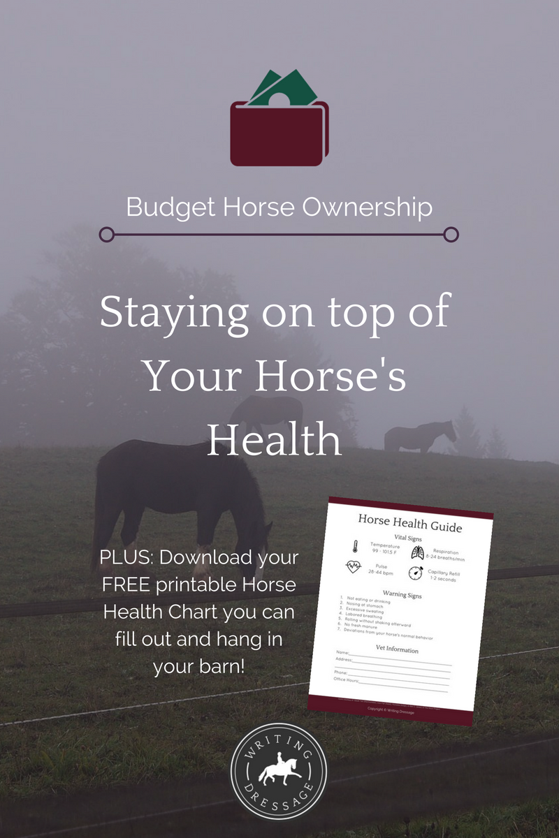 5-day freebie bash day 2 - horse health chart.png