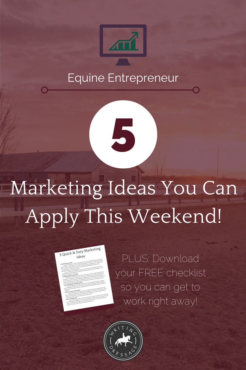 5 marketing ideas you can apply this weekend, customized for equine businesses and their unique clientele.