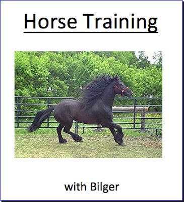 Friday Favorites: Book Review - Horse Training with Bilger