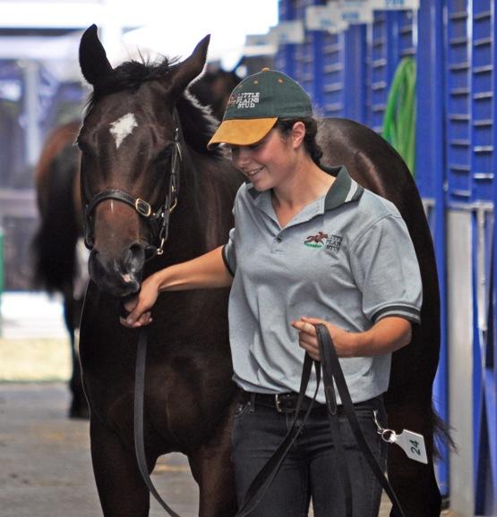 Spotlight Sunday - Equus Education & Christine Meunier