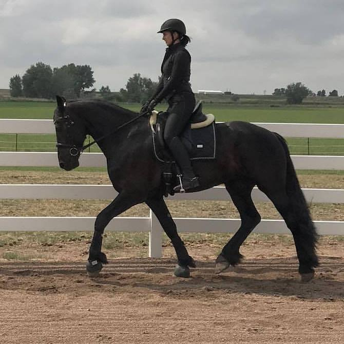 Grace - Vivacious Equestrian.jpg