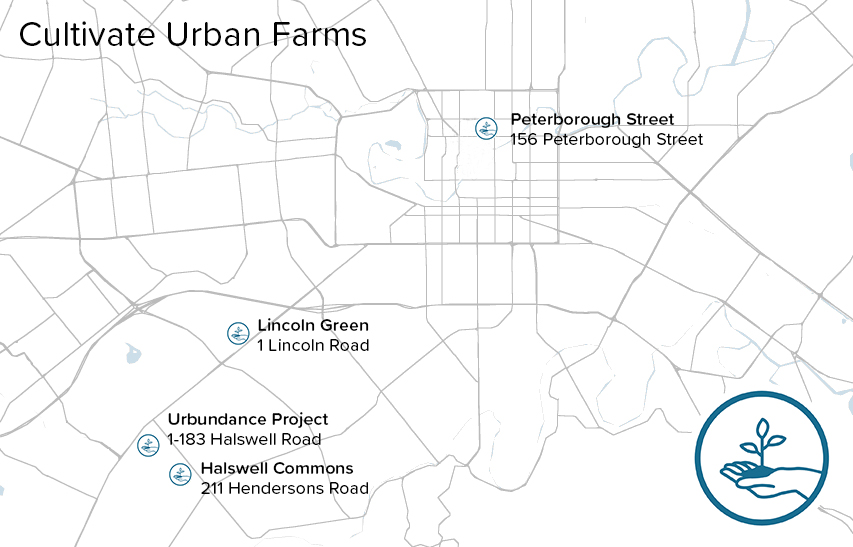We currently have four Urban Farms in Christchurch. Learn more about  our Open Days for farm visits here  or email us at hello@cultivate.org.nz