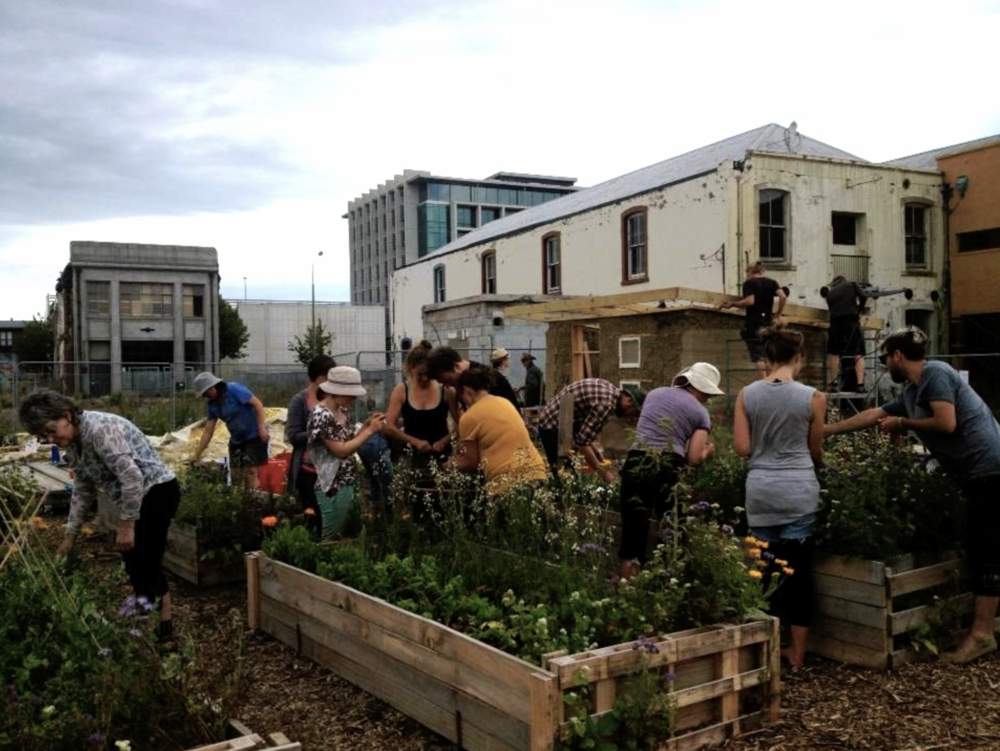 A lively working session at Agropolis Urban Farm in 2014. In the background is the building that now houses Dux Central.