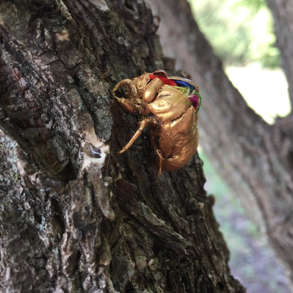 Cicada sculpture in tree
