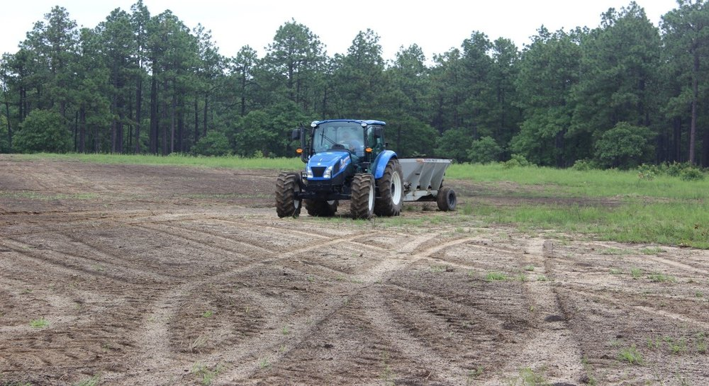 Range Field in NC