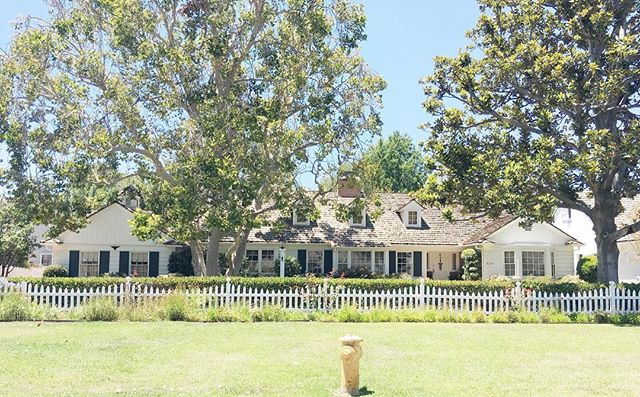 ✨Dream house alert ✨Who doesn't love large trees and a picket fence... Can we say dreamy! Also this house is located on the most filmed street in Los Angeles. Thank you @angiemuto for living directly behind it so we can day dream on the daily 😊