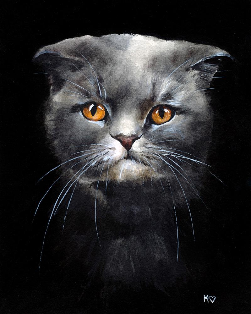 Cat3WEB.jpg