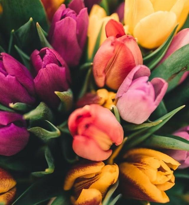We're in L O V E with spring time, aren't you? 💐 xo Molly's #mollysirishcream #irishcream #liqueur #cocktails #drinks #bartender #irish #ireland #love #friends