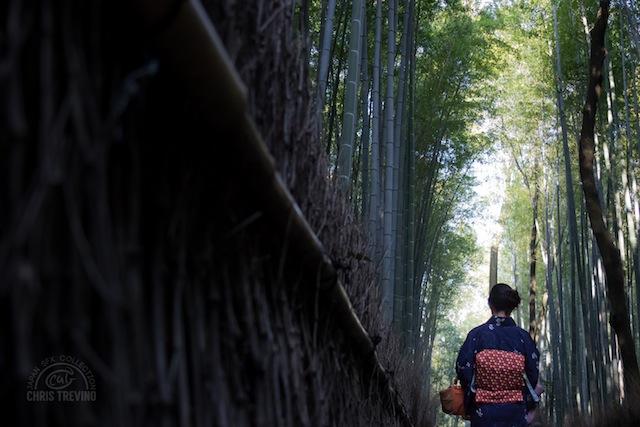 Woman in Kimono - Sagano Bamboo Forest, Kyoto Prefecture 1980x1080.jpg