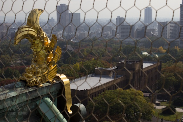A View from Osaka Castle - Osaka, Osaka Prefecture 1980x1080.jpg