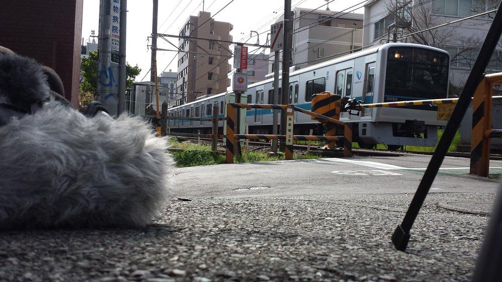 Tokyu Railway in Tokyo